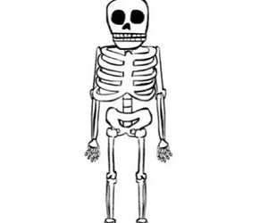 transparent, skeleton, and overlay image