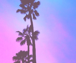 purple, palm trees, and pastel image