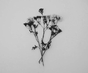 black and white, sad, and flowers image