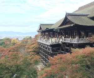 japan, kyoto, and 清水寺 image