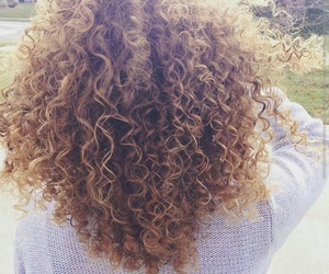 curly and haïr image