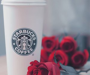 rose, starbucks, and red image