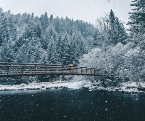 snow, bridge, and winter image