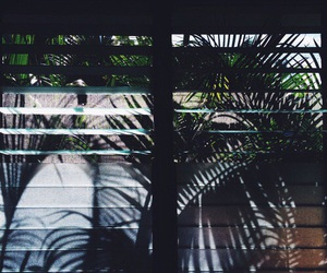 green, summer, and window image
