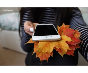 iphone, autumn, and leaves image