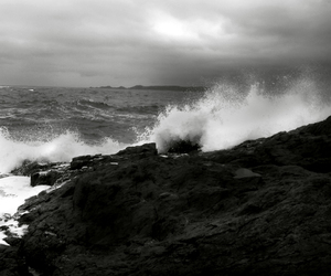beach, waves, and black and white image