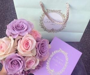 rose, flowers, and laduree image