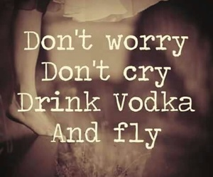 vodka, fly, and don't worry image