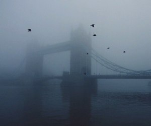 bridge, city, and foggy image