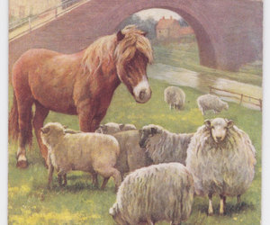 etsy, sheep, and old postcards image
