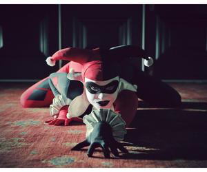 harley quinn and batman image