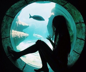 girl, fish, and water image
