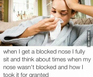 funny, nose, and sick image