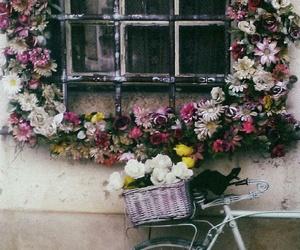 Best, instagram, and bike image