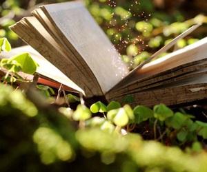 libro, naturaleza, and magia image