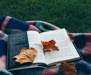 book, read, and autumn reading image