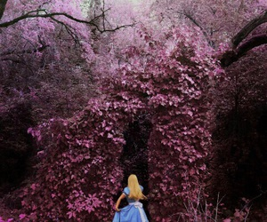alice, pink, and wonderland image