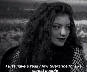 lorde, quotes, and stupid image