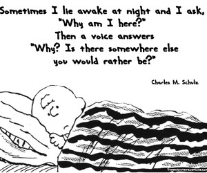 charlie brown and night image