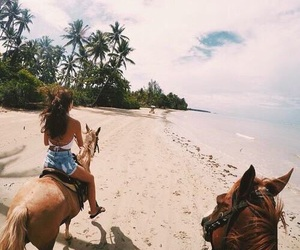 beach, horse, and summer image