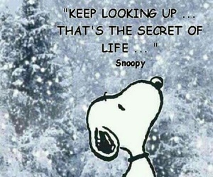 life, snoopy, and quotes image