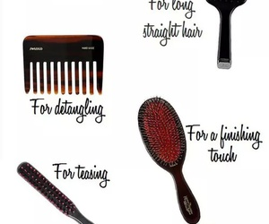 Brushes and hair image