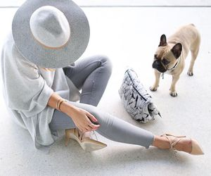 fashion, style, and dog image
