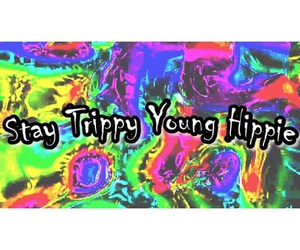 hippy, trippy, and young image