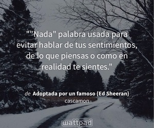 ed, frases, and teddy image
