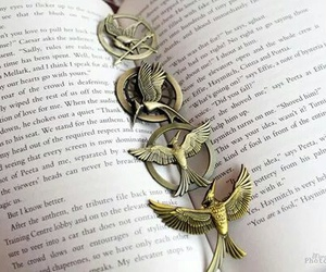 book and thg image