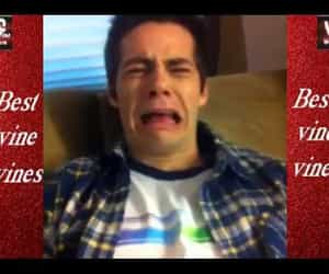 dylan, funny, and vines image
