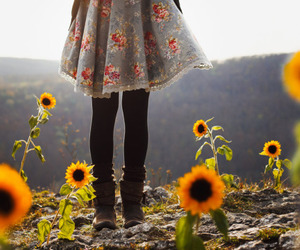 flowers, sunflower, and dress image