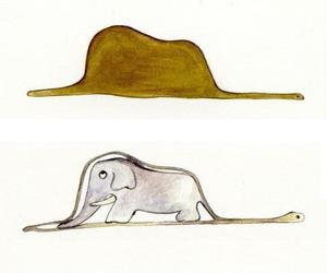 elephant, snake, and the little prince image