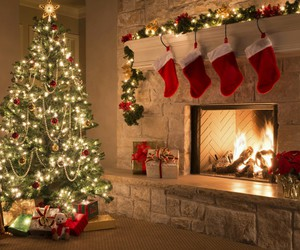 christmas, winter, and tree image