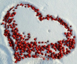 heart, snow, and white image