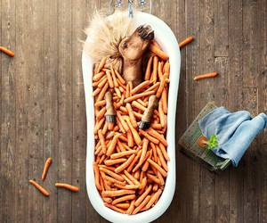 horse and carrots image