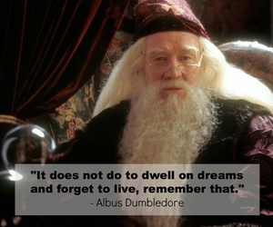 harry potter, albus dumbledore, and quotes image