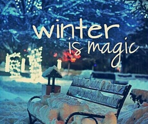 winter, magic, and snow image