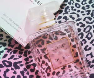 Best, chanel, and pretty image