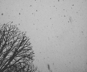 amazing, art, and snow image
