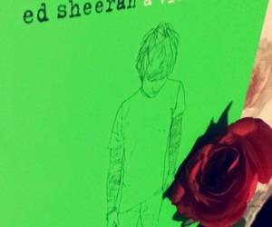 ed, rose, and ed sheeran image