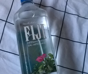 aesthetic, fiji, and pale image