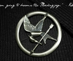 hunger games and mockingjay image