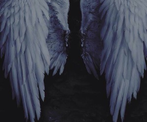 give me love, wings, and ed sheeran image