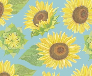 wallpaper, sunflower, and flowers image