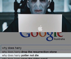 apple, funny, and harry potter image