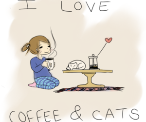 cat, coffee, and love image