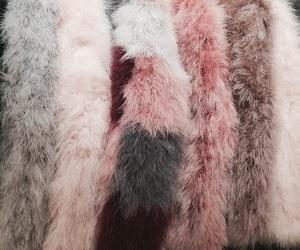 pink, rose gold, and fur image