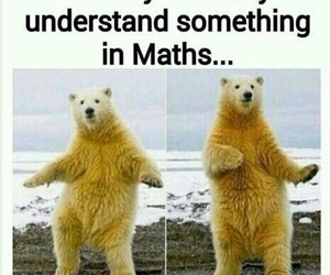 funny, maths, and math image