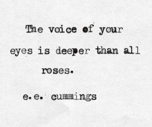 quotes, love, and roses image